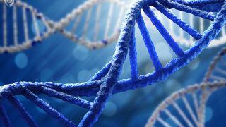 DNA غیر کد کننده چیست؟