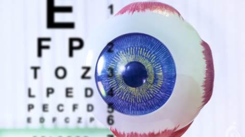 پانل NGS بیماری های چشم
