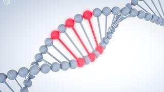 جهش ژنی چیست و جهشها چطور رخ میدهند؟