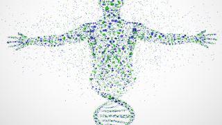 آیا تمام جهشهای ژنی بر سلامت و تکوین اثر گذارند؟