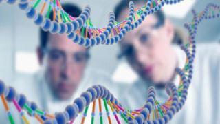 جهشهای ژنی چگونه بر سلامت و تکوین انسان اثر میگذارد؟