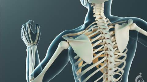 پانل بیماری های استخوانی