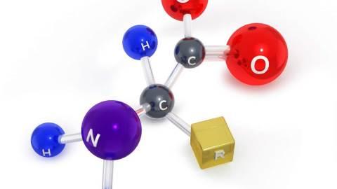 اختلالات متابولیسم اسید های آمینه