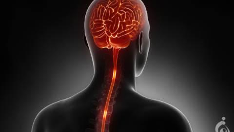 اسکلروزیس جانبی آمیوتروپیک