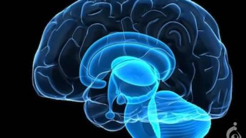آتاکسی مغزی ، ناشنوایی و حمله خواب اتوزومی غالب