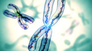 آیا اختلالات کروموزومی به ارث میرسد؟