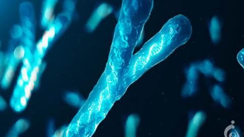ناباروری مرتبط با کروموزوم Y