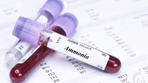 آزمایش آمونیاک