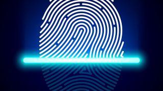 آیا اثر انگشت توسط ژنتیک تعیین میشود؟