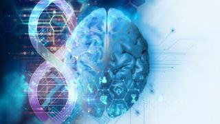 آیا هوش توسط ژنتیک تعیین میشود؟