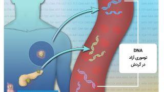 DNA توموری گردش کننده چیست و چه کاربردی در تشخیص و مدیریت سرطان دارد؟