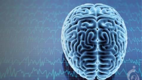 نوروپاتی ارثی همراه با استعداد فلج فشاری