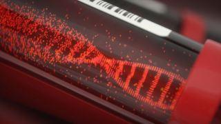 بررسی آزمایش NIPT در آزمایشگاه ژنتیک مندل