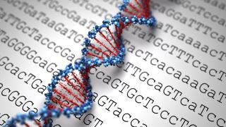 آزمایش ژنتیک چیست؟