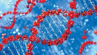 مشاوره ژنتیک قبل از ازدواج