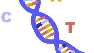مشاوره ژنتیک و هدف از انجام مشاوره ژنتیکی