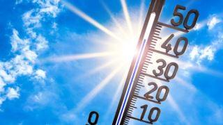 قرار گرفتن در معرض امواج گرمایی با افزایش خطر زایمان زودرس مرتبط است