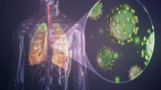 ویروس کرونا از طریق ژن ها، سیستم ایمنی را بر علیه خودمان به کار می گیرد