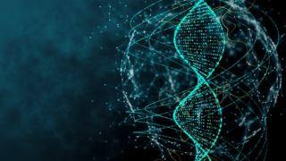 در طی جلسات مشاوره ژنتیک چه اتفاقی می افتد؟
