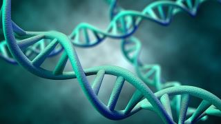 دکتر متخصص ژنتیک به چه کسی باید مشاوره ژنتیک دهد؟