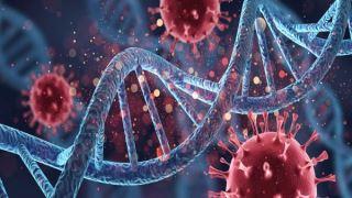 آسیب DNA سلول های ریه در عفونت های شدید کرونا