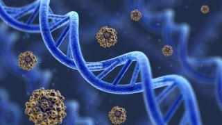 انواع آزمایش های ژنتیک در آزمایشگاه مندل