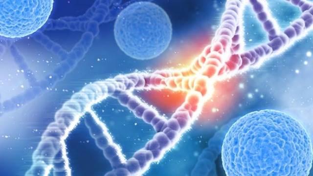 انواع آزمایش های ژنتیک