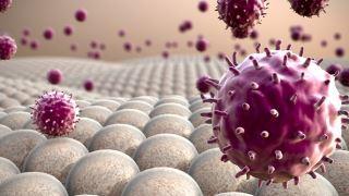 ویروس برونشیت و کرونا ویروس (COVID-19)