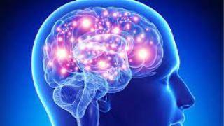 از اختلالات ژنتیکی مغز چه می دانید؟
