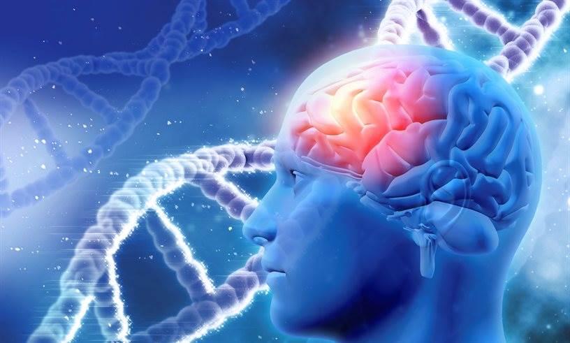 اختلالات ژنتیکی مغز