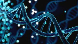 چگونه ژن های مختلف می توانند بر سلامت و رشد تأثیر بگذارند؟