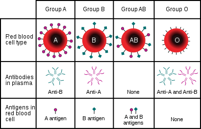 آنتی ژن گروه خون