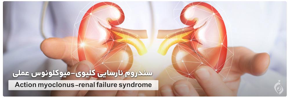 Action myoclonus-renal failure syndrome