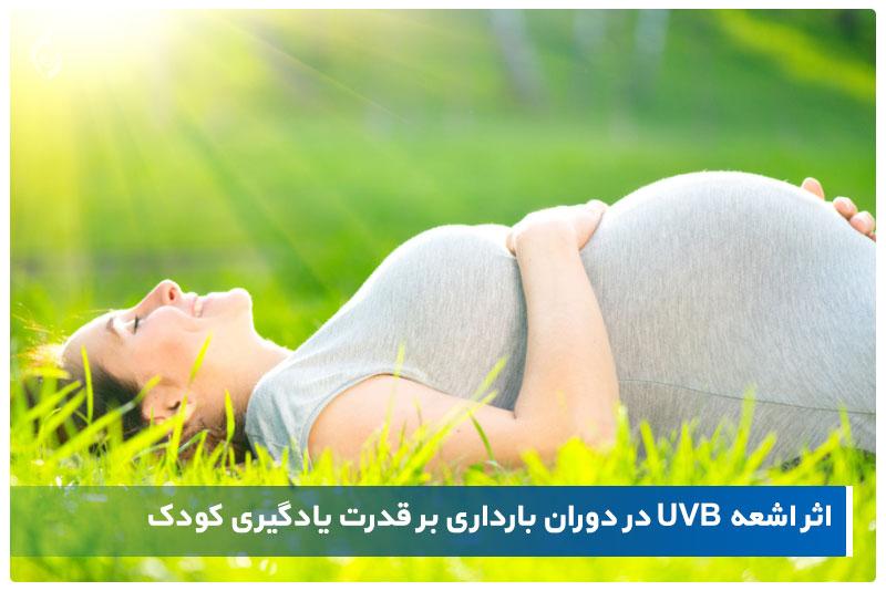 اثر اشعه UVB در دوران بارداری بر قدرت یادگیری کودک