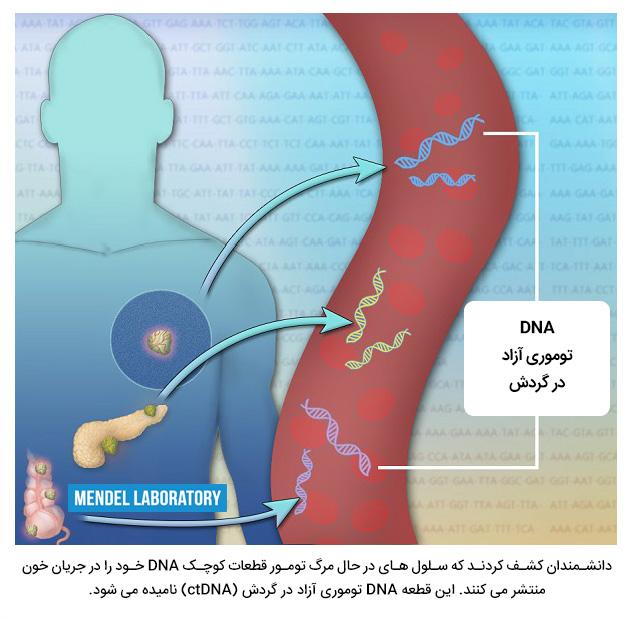 DNA آزاد در گردش