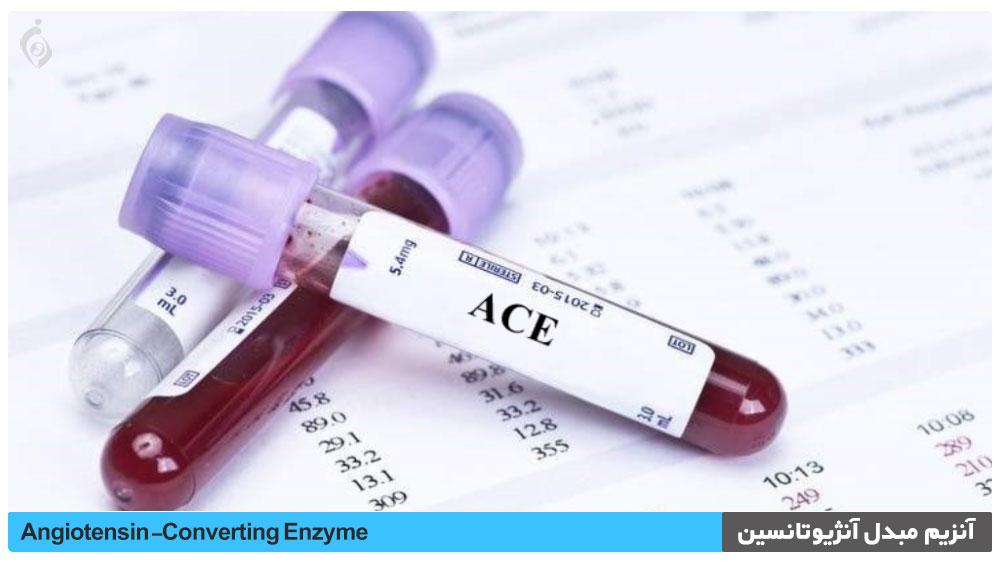 آنزیم مبدل آنژیوتانسین (ACE)