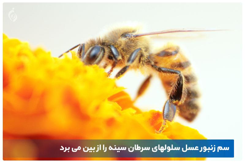 عسل و سرطان سینه